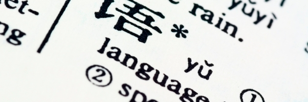 English Immersion in Schools